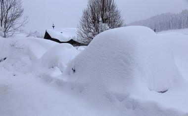 V Avstriji spet sneži, vlada velika nevarnost plazov, več krajev odrezanih od sveta!