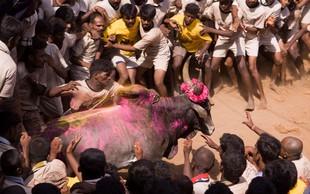 V borbi s 1350 biki v Indiji dva mrtva in 41 ranjenih