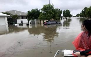 V hudih poplavah v Avstraliji bi lahko poginilo več sto tisoč glav živine