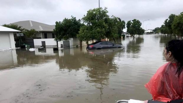 V hudih poplavah v Avstraliji bi lahko poginilo več sto tisoč glav živine (foto: Profimedia)