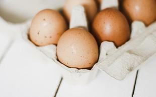 HOFER tudi iz svojih izdelkov umika jajca iz baterijske reje
