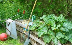 Z Jernejo Jošar do zdravega vrta na naraven in ekološki način!
