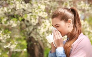 Pomlad je letni čas, ko kraljujejo alergije
