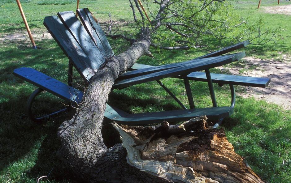 Težave zaradi vetra na avstrijskem Štajerskem in Koroškem (foto: Profimedia)
