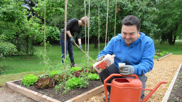Dognojevanje – najbolj učinkovita je kombinacija gnojenja prek listov in korenin hkrati. (foto: Arhiv Kluba Gaia)