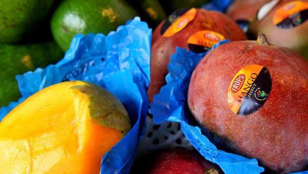 Na Filipinih presežki manga: Morajo pohiteti s prodajo, sicer bo sadje zgnilo (foto: Tamino Petelinšek/STA)