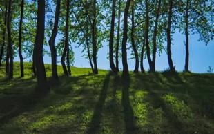 Dr. Qing Li: Z gozdom do sreče in zdravja