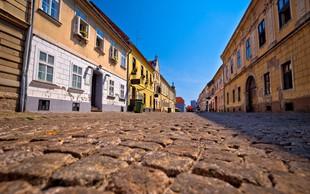 V Osijeku imajo po invaziji komarjev na ulicah še morje ščurkov!