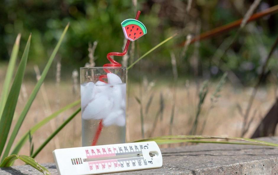 Na Babnem polju temperatura padla na 2,9 stopinje Celzija (foto: Profimedia)