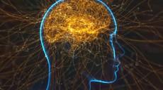 Domišljija lahko vpliva na živčni sistem in spremeni dojemanje resničnosti