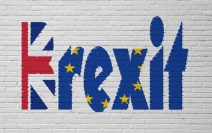 Nizozemci ob brexitu pripravljajo veliko zabavo