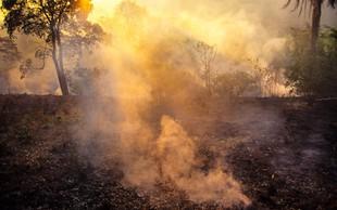 Brazilski predsednik odgovornost za požare v pragozdu prevalil na - nevladnike!