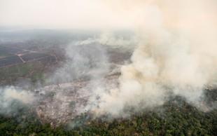 Mladi za podnebno pravičnost s protestom v Ljubljani zaradi požarov v Amazoniji