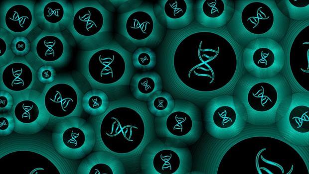 Ni enega samega gena za homoseksualnost, pravi študija (foto: Profimedia)
