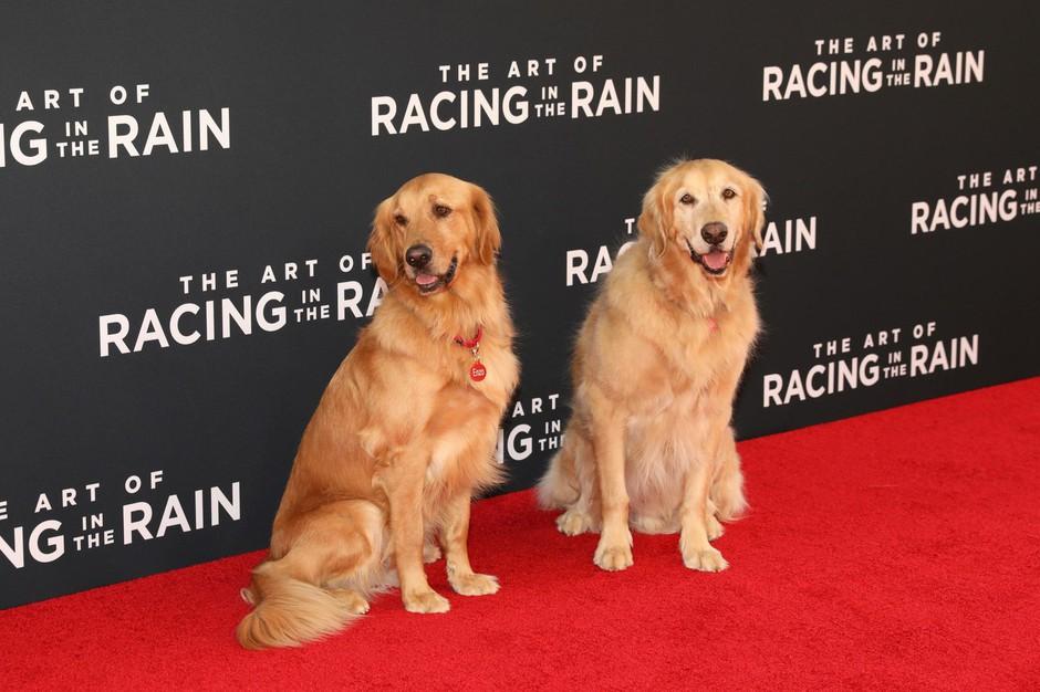 Parker in Butler, zlata prinašalca, ki sta odlično opravila svojo vlogo v filmu. (foto: Profimedia)