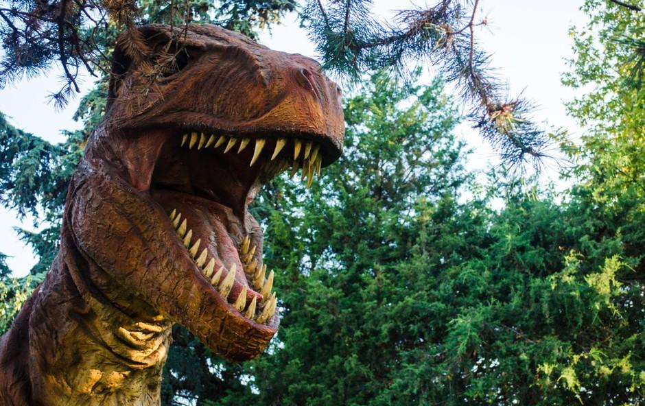 Odkrili novo vrsto dinozavra in jo poimenovali japonski zmajski bog (foto: profimedia)