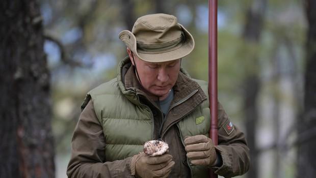 Putin praznuje rojstni dan: Ob tej priložnosti se je odpravil gobarit (foto: Profimedia)
