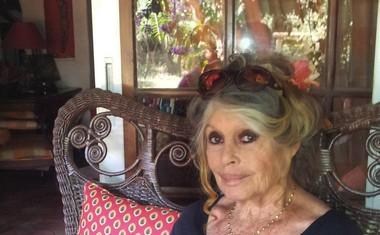 Brigitte leta 2013 v svoji vili v Saint Tropezu, kjer živi s številnimi živalmi.