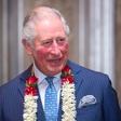 Roke princa Charlesa pritegnile poglede: Zakaj so otečene?